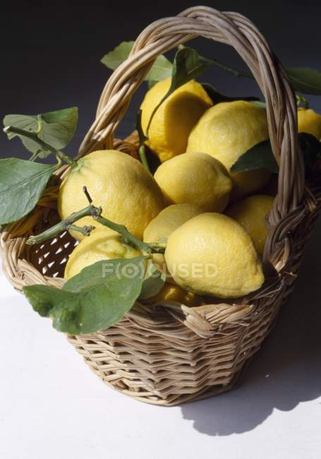 Fresh Lemons with leaves — Stock Photo