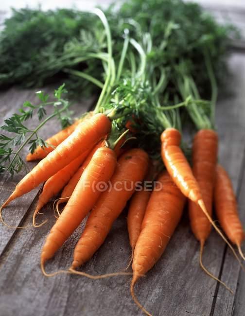 Zanahorias con sus tapas - foto de stock