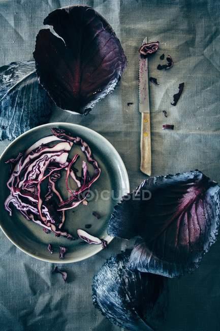Свежие красные листья и полоски капусты — стоковое фото
