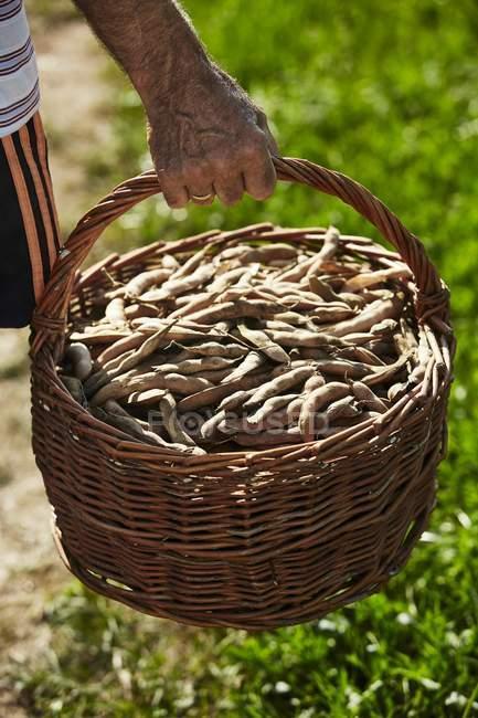Man carrying basket — Stock Photo