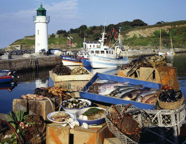 Pendant la journée vue du stand de marché de poisson et fruits de mer à Belle Ile en Bretagne — Photo de stock