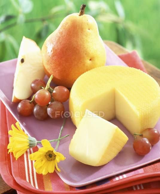 Порт Салют сыр — стоковое фото