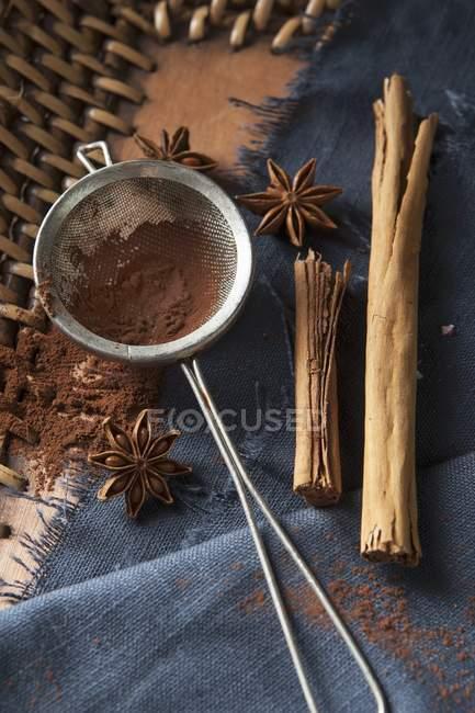 Cocoa powder in a tea strainer — Stock Photo
