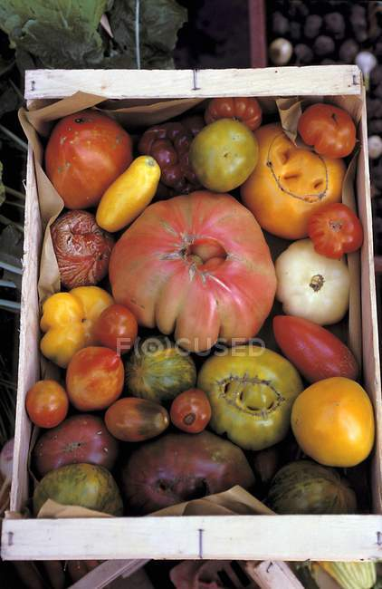 Colorful tomatoes in crate — Stock Photo