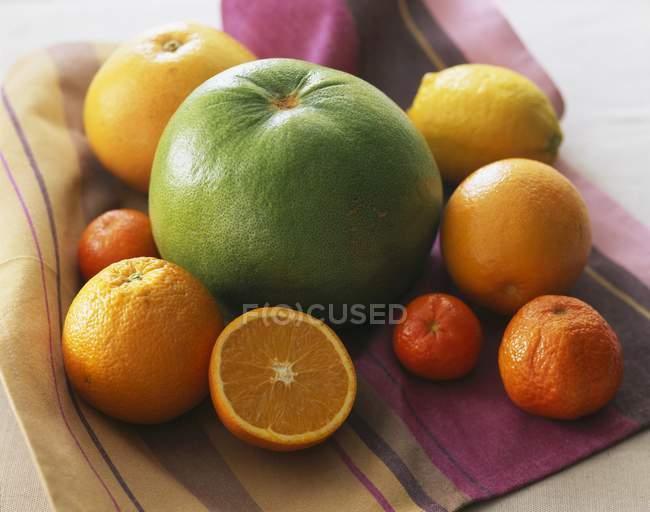 Selección de frutas cítricas - foto de stock