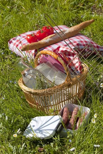 Picknickkorb im Gras — Stockfoto