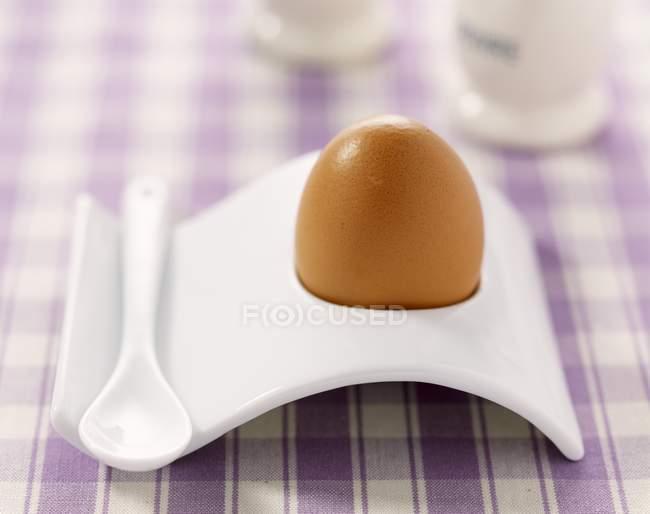 Ovo cozido marrom — Fotografia de Stock