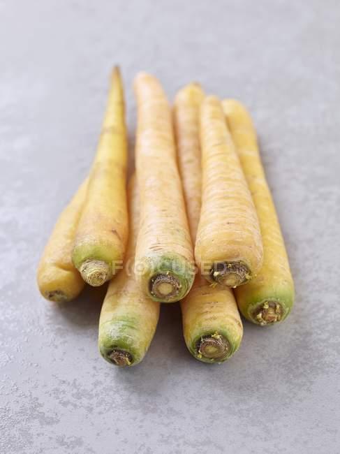 Several yellow carrots — Stock Photo