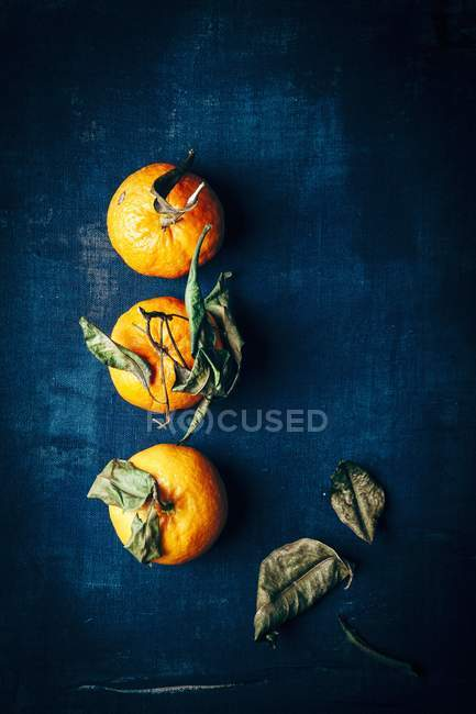 Fresh ripe Tangerines — Stock Photo