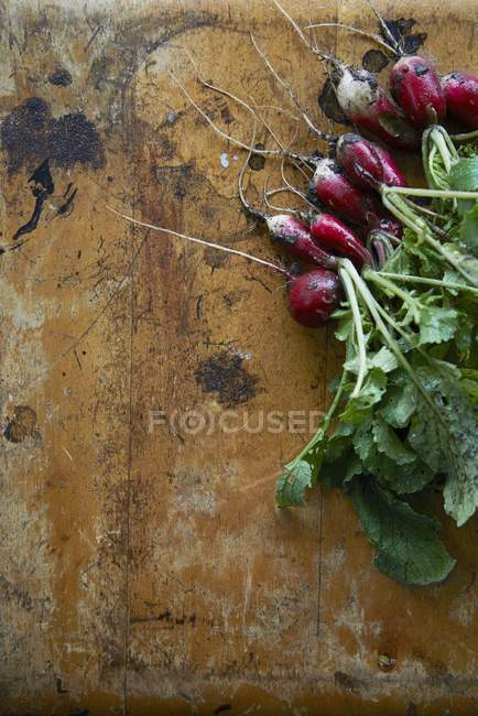 Rabanetes frescos com folhas — Fotografia de Stock