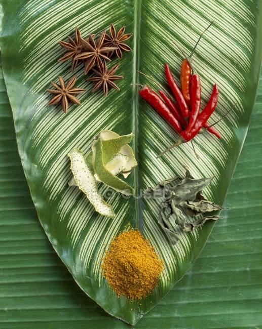 Выбор специй на пальмовый лист — стоковое фото