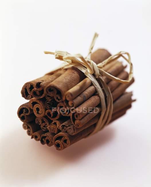 Cinnamon sticks on white background — Stock Photo