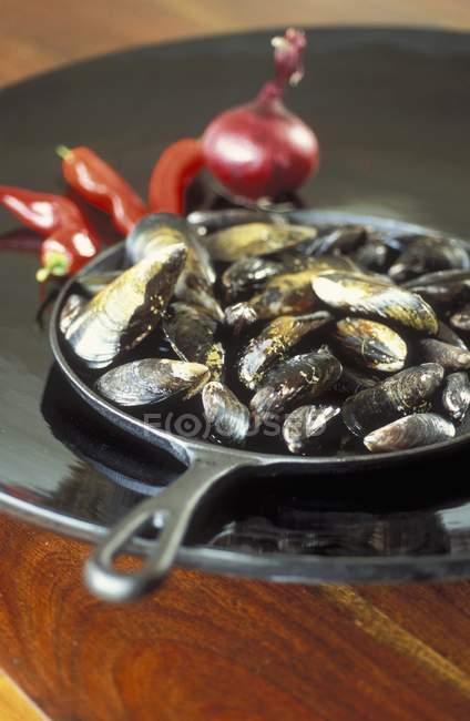 Moules cuisiner dans une casserole — Photo de stock