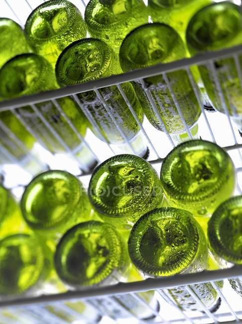 Шари пивних пляшок — стокове фото