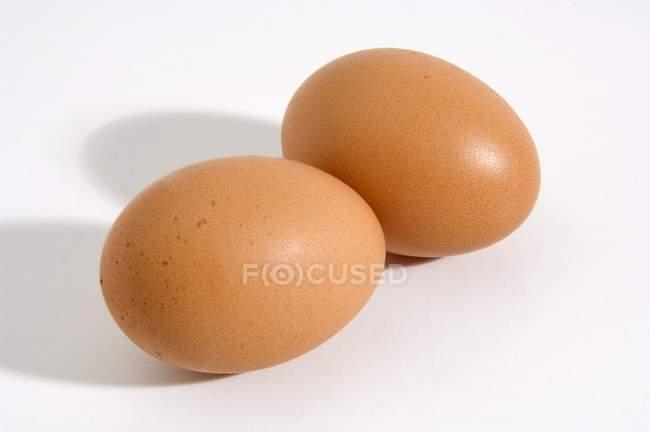 Свежие куриные яйца — стоковое фото