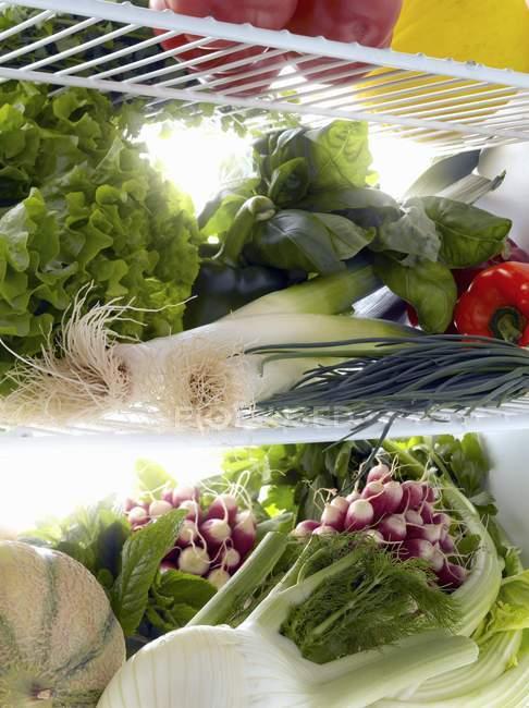 Raw fresh vegetables — Stock Photo