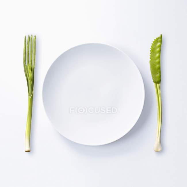 Empty plate and vegetables — Stock Photo