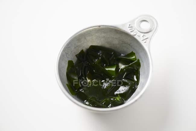 Detailansicht der hydratisierten Wakame Algen in der Schüssel weiß — Stockfoto
