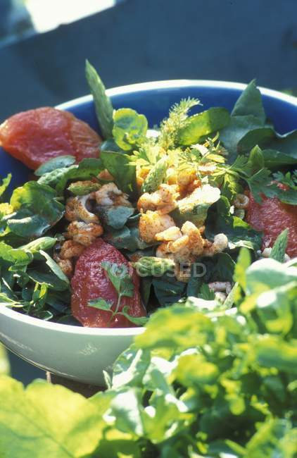 Green salad with crayfish — Stock Photo