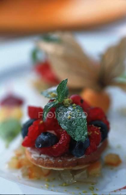 Pudding d'été mini avec baies — Photo de stock