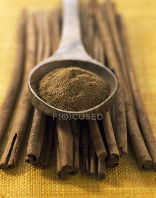 Cinnamon sticks and powder — Stock Photo