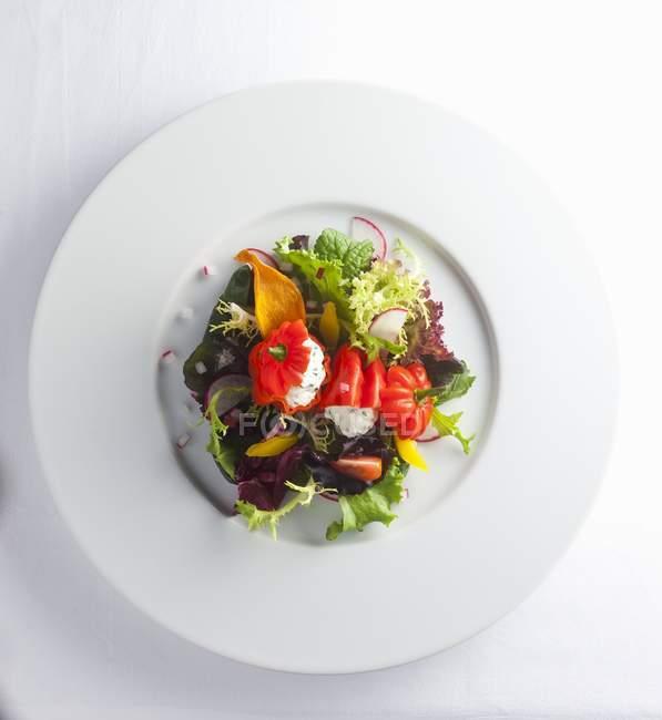 Tomaten gefüllt mit Käse — Stockfoto