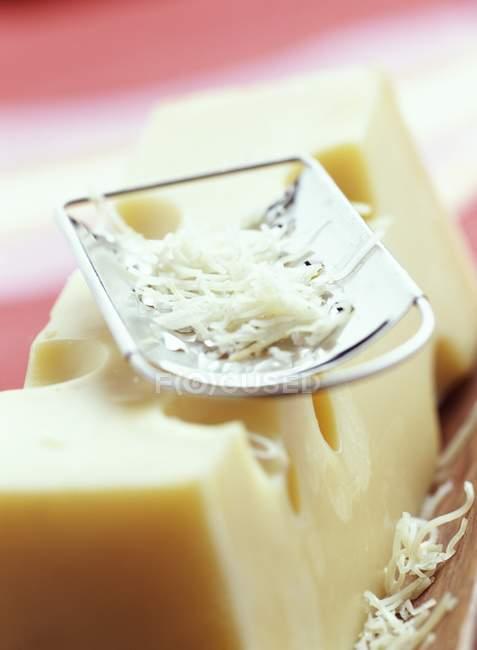 Gruyre сыра и терке — стоковое фото