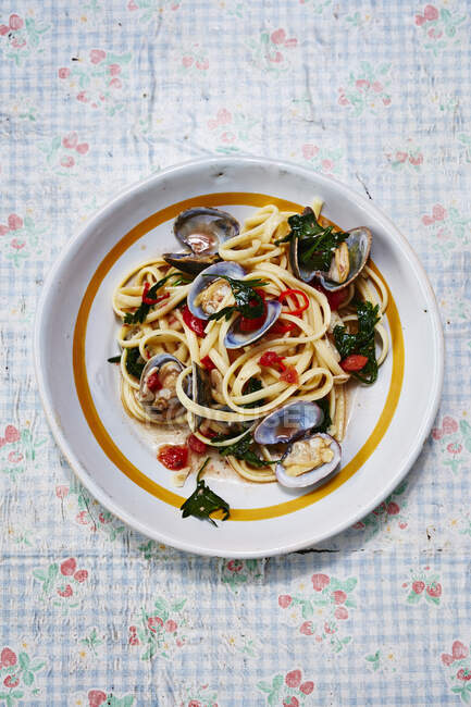 Pasta vongole in white plate — Stock Photo
