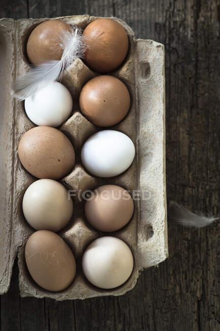 Ovos castanhos e brancos em caixa de papel com penas — Fotografia de Stock