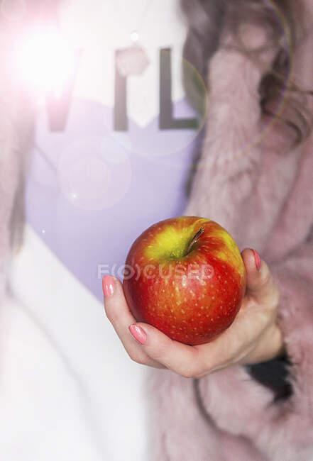 Manzana roja y verde sostenida en una mano femenina - foto de stock