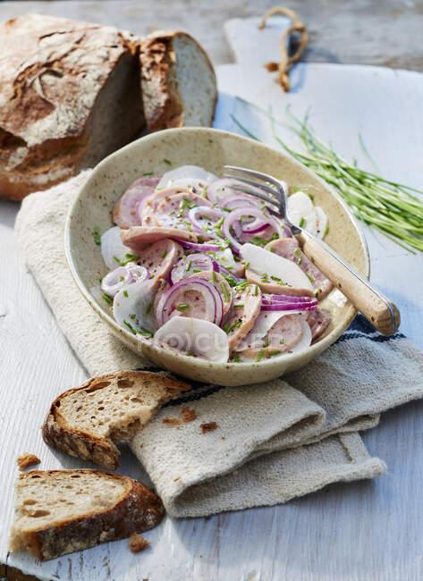 Une salade de viande rustique aux radis et oignons rouges — Photo de stock