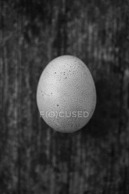Un huevo (vista superior) - foto de stock