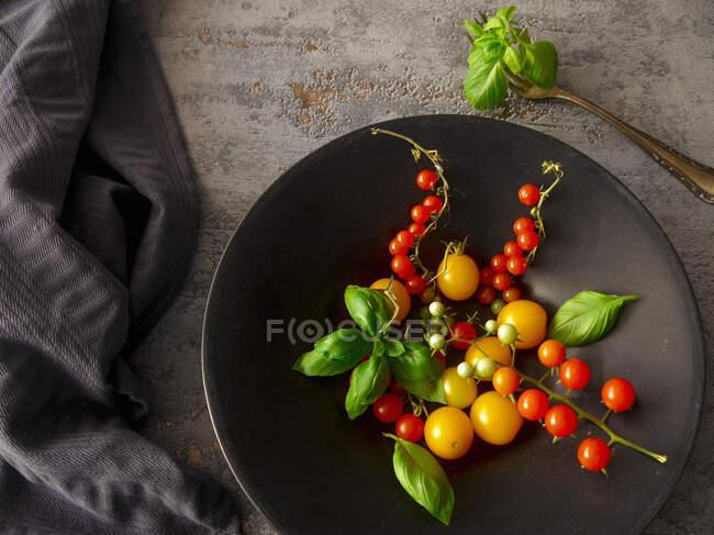 Varios mini tomates con albahaca en cuenco de metal - foto de stock