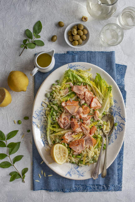 Orzo and hot smoked salmon salad with beans, lettuce and lemon and olive oil dressing — Stock Photo