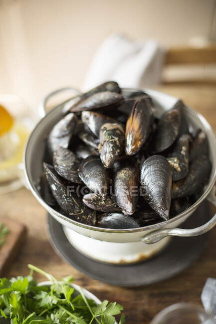 Raw mussels in colander — Stock Photo