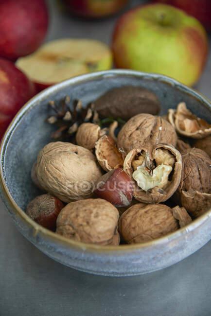 Walnuts and hazelnuts in a ceramic bowl - foto de stock