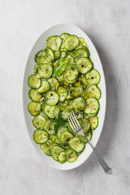 Salade de concombre tranchée au vinaigre sucré rapide avec aneth, maïs poivré, feuilles de laurier et graines de moutarde — Photo de stock