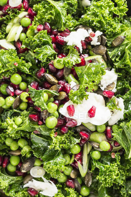 Ensalada de invierno con col rizada verde, semillas de granada, guisantes, mozzarella y semillas de calabaza - foto de stock