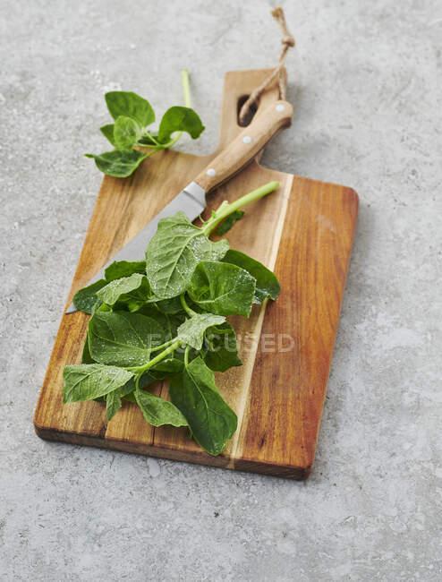 Espinacas frescas de orache en una tabla de cortar de madera - foto de stock