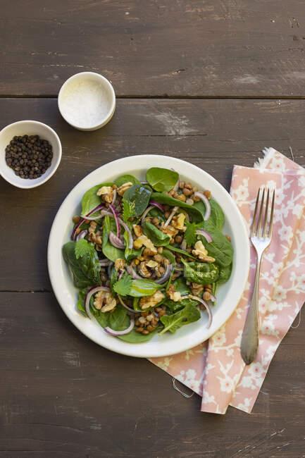 Salade d'épinards, oignons rouges, lentilles et noix, poivre noir, sel — Photo de stock