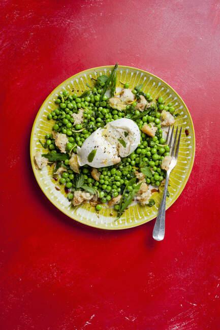 Gros plan sur la salade de pois Buratta — Photo de stock