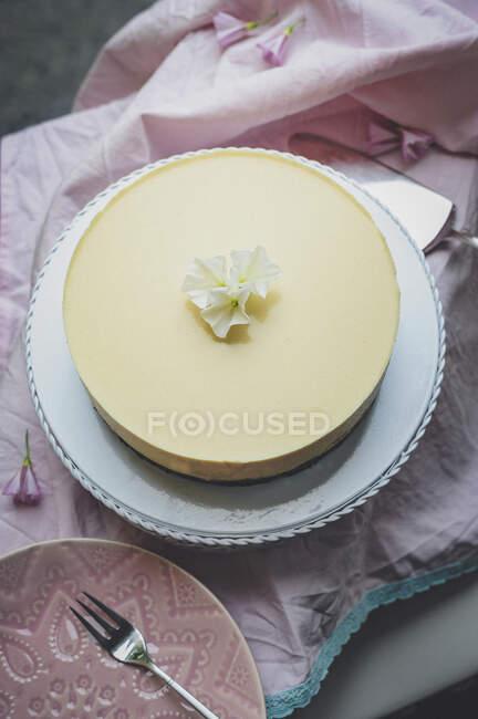 Gâteau au fromage à base de chocolat, nectarines et oranges — Photo de stock