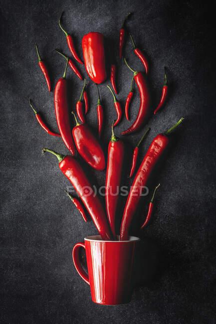 Свежий красный и острый перец чили на темном фоне — стоковое фото