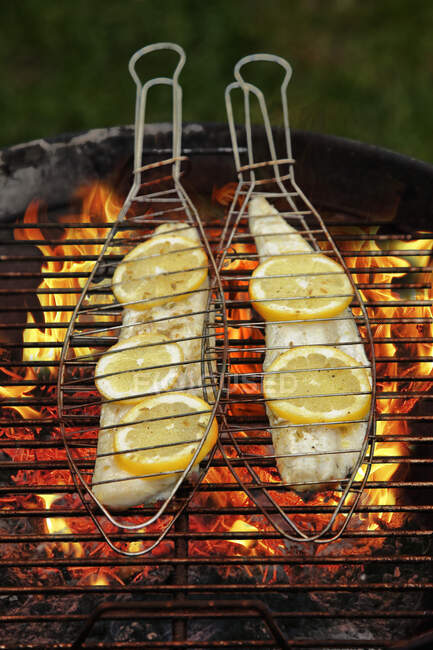 Zander fillets in fish baskets on a grill — Stock Photo