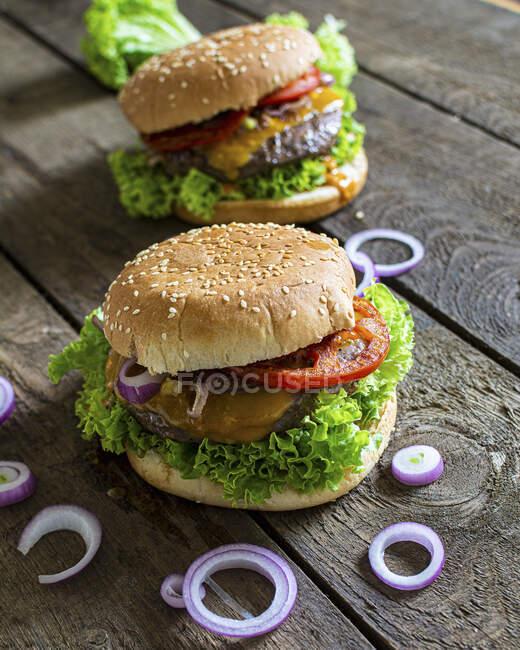 Una hamburguesa con cebolla roja - foto de stock