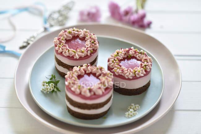 Tortas de queso crema de frutas dragón rosa vegana con bases de galletas de chocolate y esmaltes espejo de frutas - foto de stock