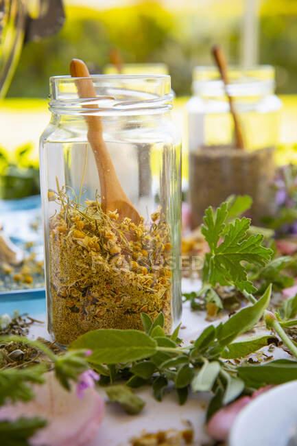 Especias secas caseras y hierbas en frasco y hojas verdes en la mesa - foto de stock