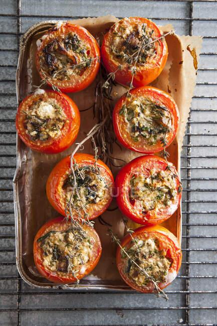 Tomates rellenos de queso y hierbas - foto de stock