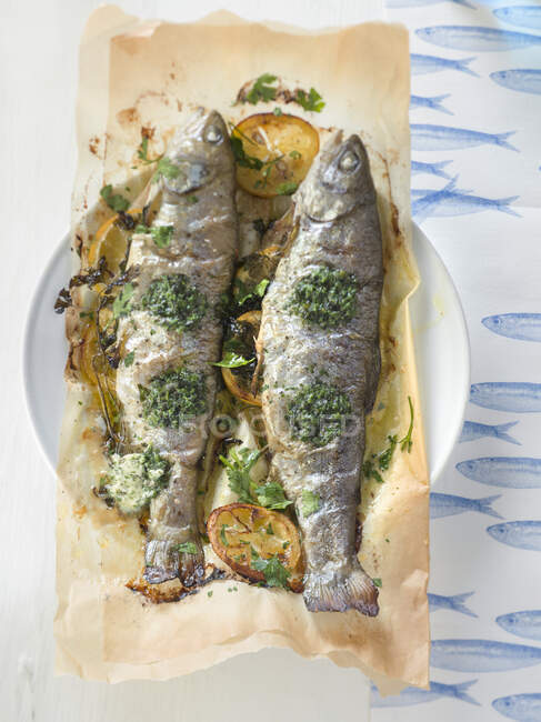 Close-up shot of delicious Fried trout on baking paper — Stock Photo
