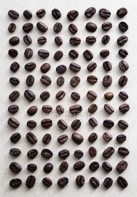 Granos de café dispuestos en una rejilla - foto de stock